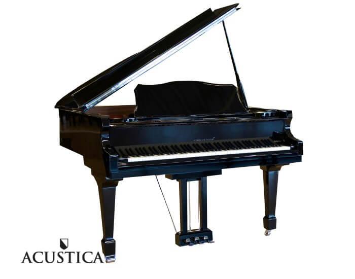 Hermann Jacobi Liszt zwart