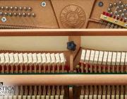 Pearl River Piano Mechaniek
